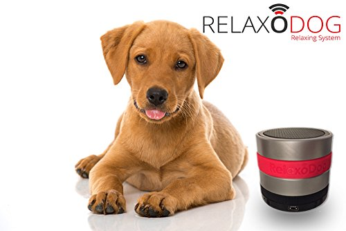 relaxodog-modell